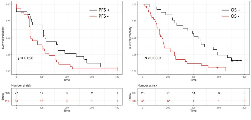 Curves showing the effects on the survival of patients with pancreatic cancer when gemcitabine treatment was positive.