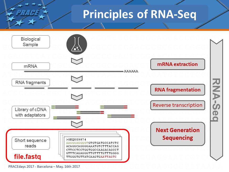 RNA-Seq : Principles by Acobiom